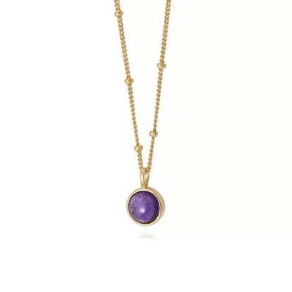 Picture of Amethyst Healing Stone Necklace 18Ct Gold Plate