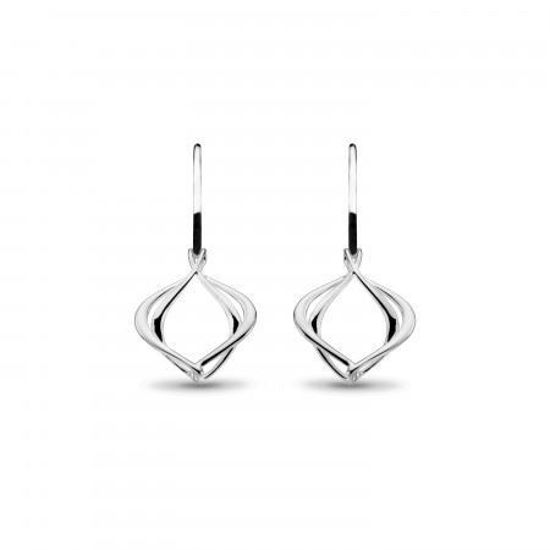 Picture of Entwine Alicia Small Drop Earrings