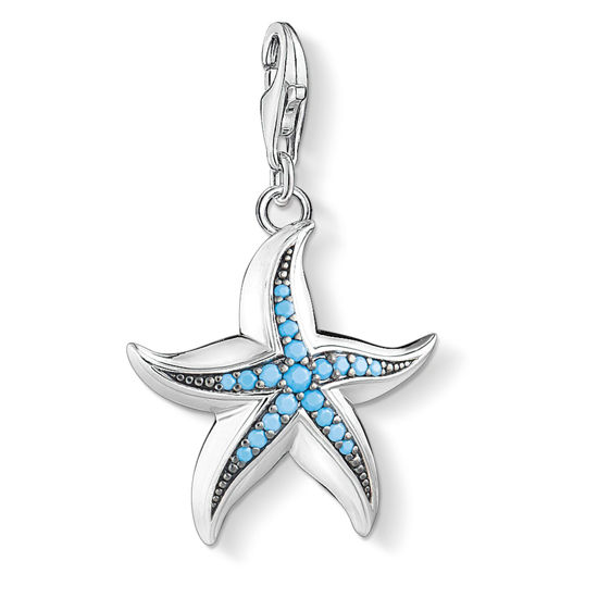 Picture of Large Starfish Charm