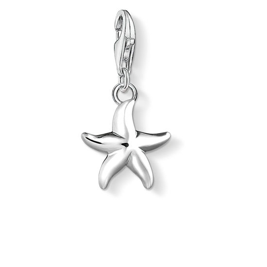 Picture of Silver Starfish Charm